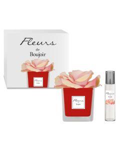 Rosa Rosa in vaso Rosso + Profumo per Fiore 15 ml
