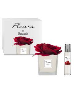 Rosa Rossa in vaso Bianco + Profumo per Fiore 15 ml