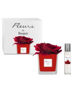 Rosa Rossa in vaso Rosso + Profumo per Fiore 15 ml